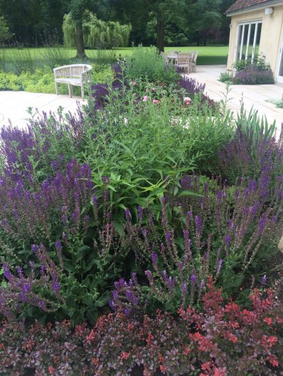 A beautifully designed and landscaped garden, with full purple flowers, paving and a wooden bench